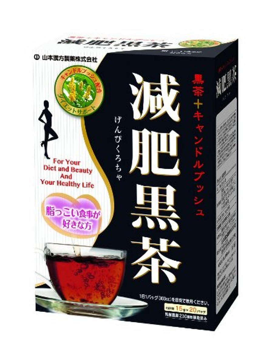 スマートかわいらしいフレッシュ山本漢方製薬 減肥黒茶 15gX20H