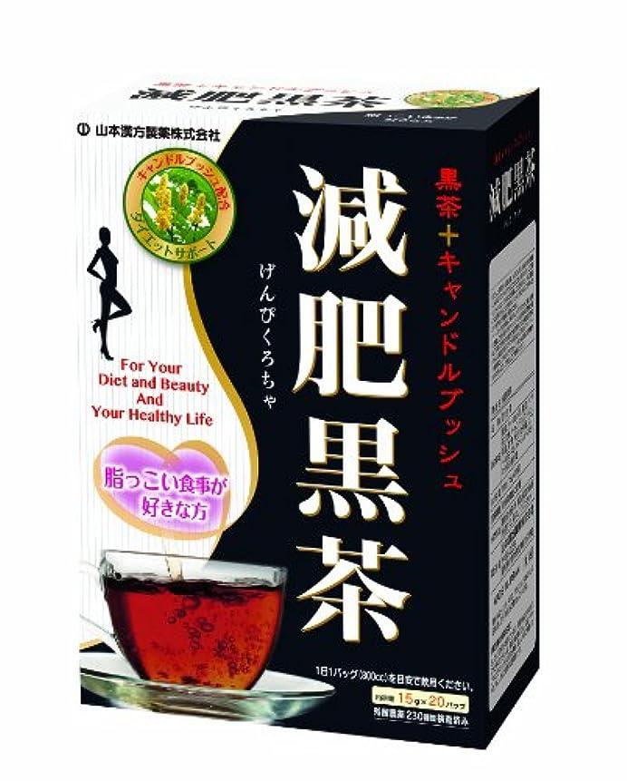 ミネラル再撮り縮約山本漢方製薬 減肥黒茶 15gX20H