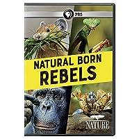 NATURE: Natural Born Rebels DVD [並行輸入品]
