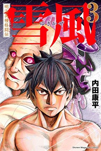 明治異種格闘伝 雪風(3) (マンガボックスコミックス)の詳細を見る