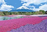 300ピース ジグソーパズル めざせ! パズルの達人 芝桜咲く富士―山梨(26x38cm)