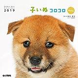 カレンダー2019 子いぬコロコロ mini (ヤマケイカレンダー2019)