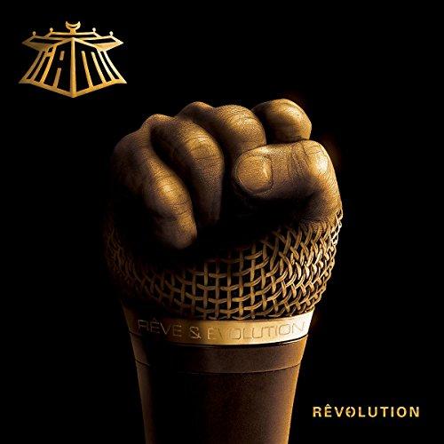 Revolution [12 inch Analog]