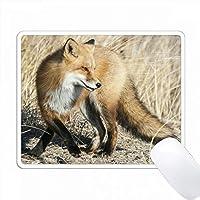 Fox Posing PC Mouse Pad パソコン マウスパッド