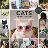 Cats on Instagram 2020 Wall Calendar
