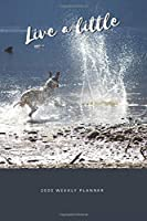 Live a Little: 2020 Weekly Planner: Motivational Dog Themed Daily Work or Home Planner with New Year's Resolution Goal Setting, Year at a Glance and 2020 Calendar