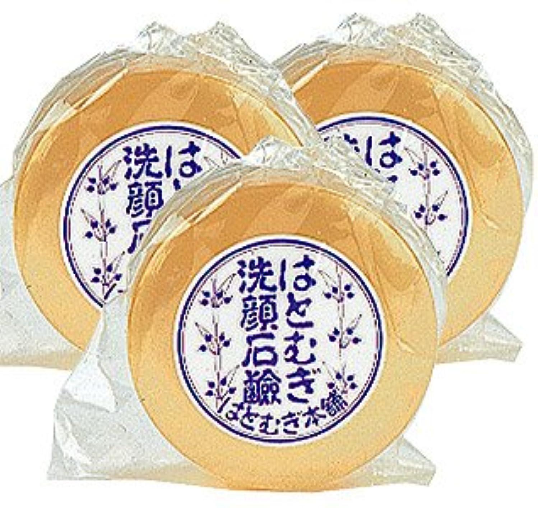 屋内中古切手はとむぎ洗顔石鹸 100g【3本セット】皇漢薬品研究所