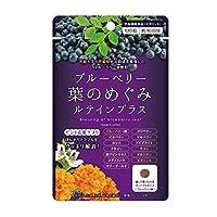 ブルーベリー葉のめぐみ ルテインプラス ビルベリー アサイー ビタミンA 配合 1袋 (120粒/約1ヶ月分)