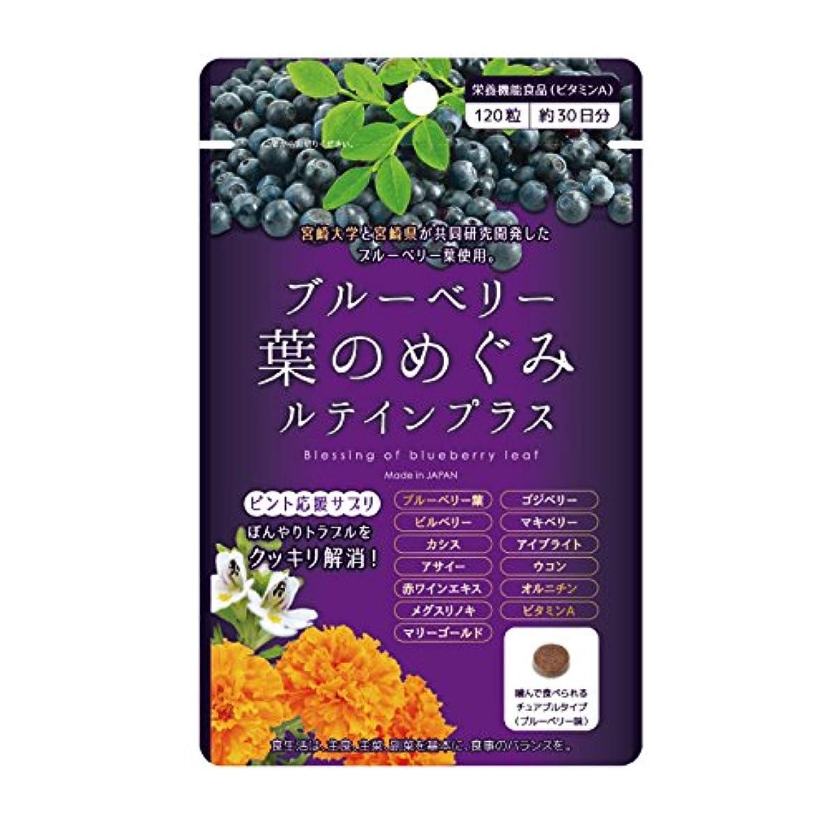 敷居可能にする太いブルーベリー葉 の めぐみ ルテイン プラス ビルベリー アサイー ビタミンA 配合 1袋 ?チュアブルタイプ? (120粒/約1ヶ月分