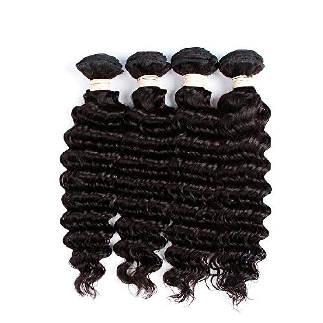 SRY-Wigファッション ファッションレースフロントウィッグ黒人女性カーリーブラジルバージンヘアグルーレス用人毛ウィッグ (Color : ブラック, Size : 18inch)