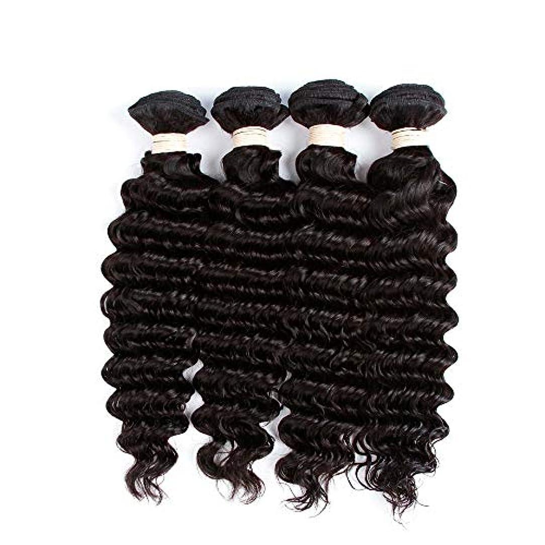 植物の粘土バージンSRY-Wigファッション ファッションレースフロントウィッグ黒人女性カーリーブラジルバージンヘアグルーレス用人毛ウィッグ (Color : ブラック, Size : 18inch)