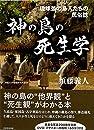 神の島の死生学ー琉球弧の島人たちの民俗誌ー (沖縄大学地域研究所叢書)