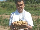 インカのめざめ 3kg (サイズ無選別) 北海道産ジャガイモ