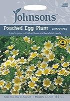 JOFL 英国ジョンソンズシード Poached Egg Plant-Limnanthes ポーチド・エッグ・プラント(リムナンテス)