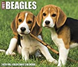 Just Beagles 2020 Calendar