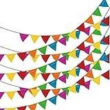 ループジョイゲーム(LOOBJOYGAME) 250枚 マルチカラー 三角旗 フラッグガーランド、80cm(263フィート) ナイロン生地 飾り付け用 旗