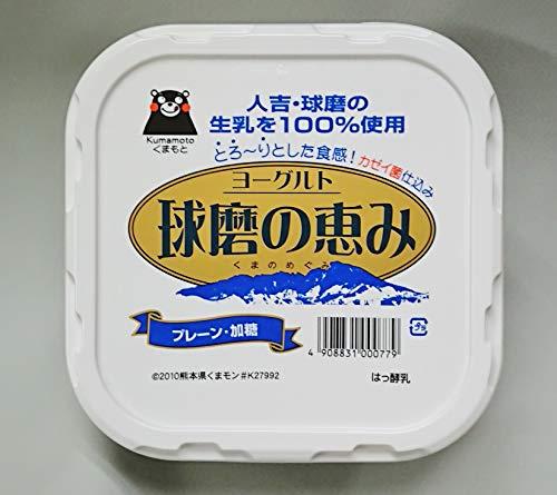 熊本 球磨の恵み(加糖) 1パック1kg×6個