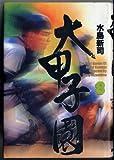 大甲子園―The best games of great koshien (8)