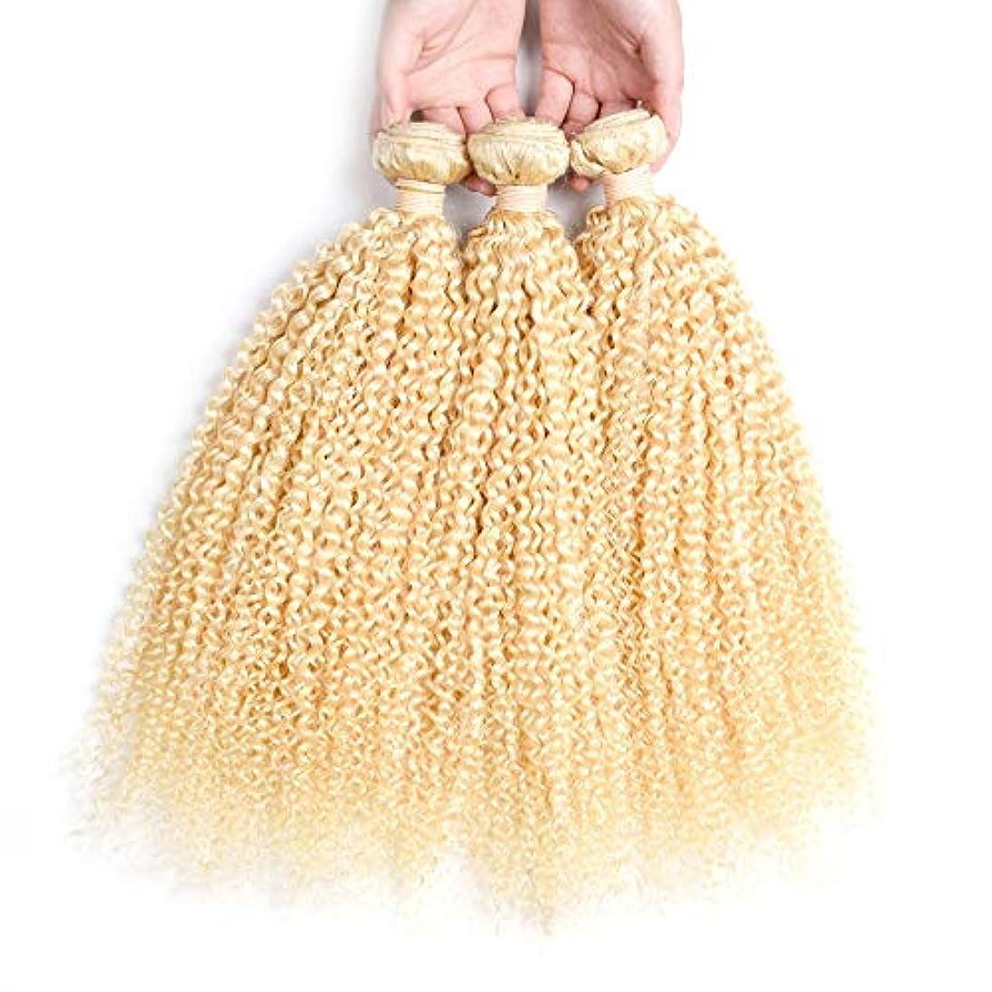甘くする正確さ主HOHYLLYA ブロンドの人間の髪織りバンドル本物の変態カーリーヘアエクステンション横糸 - #613ブロンドの髪(1バンドル、10-26インチ、100g)ブロンドのかつら (色 : Blonde, サイズ : 10...