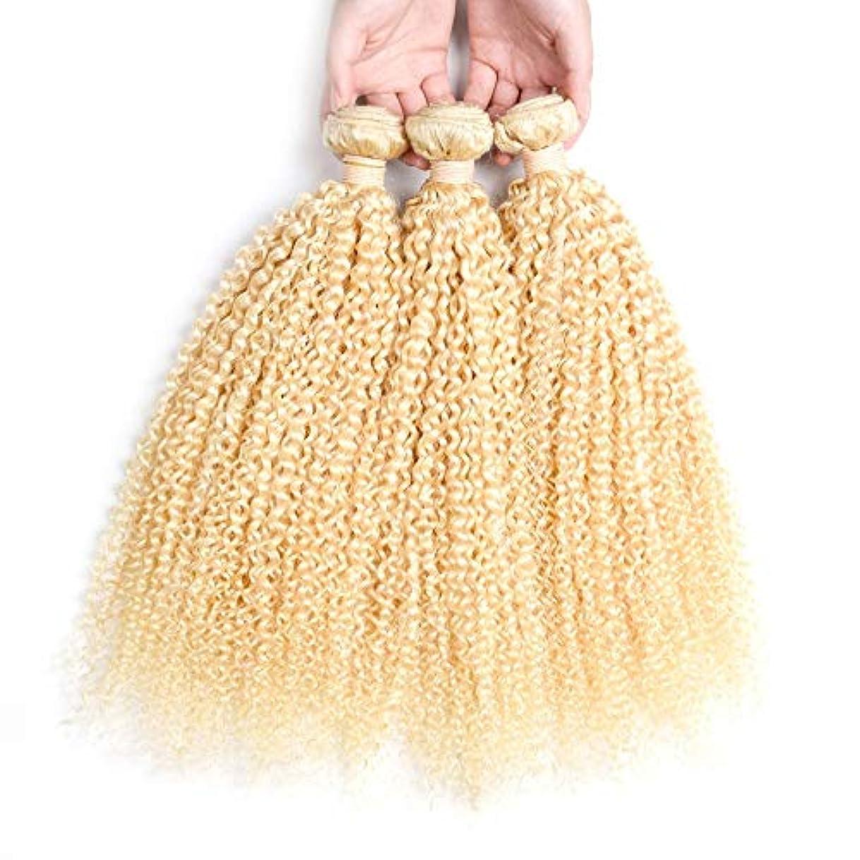 万歳急襲洗うHOHYLLYA ブロンドの人間の髪織りバンドル本物の変態カーリーヘアエクステンション横糸 - #613ブロンドの髪(1バンドル、10-26インチ、100g)ブロンドのかつら (色 : Blonde, サイズ : 10...