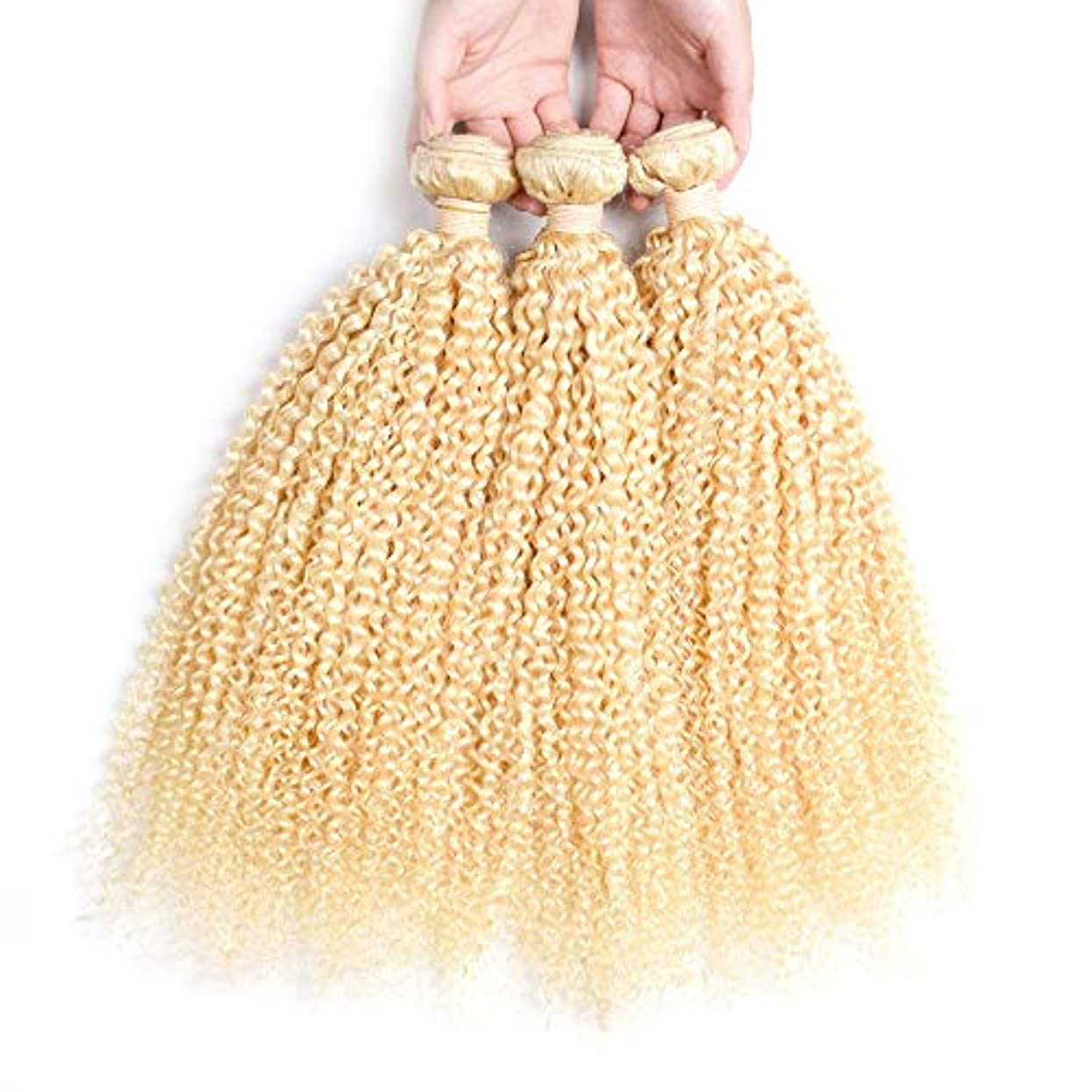 ツールピルファー明快HOHYLLYA ブロンドの人間の髪織りバンドル本物の変態カーリーヘアエクステンション横糸 - #613ブロンドの髪(1バンドル、10-26インチ、100g)ブロンドのかつら (色 : Blonde, サイズ : 10...