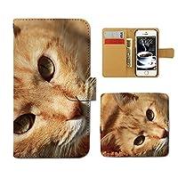 (ティアラ) Tiara HUAWEI Mate 9 51090YMG スマホケース 手帳型 ねこ 手帳ケース カバー猫 ねこ ネコ 写真 ペット 子猫 かわいい E0261040096403