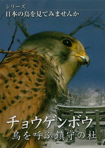 シリーズ日本の鳥を見てみませんか チョウゲンボウ鳥を呼ぶ鎮守の杜 [DVD]