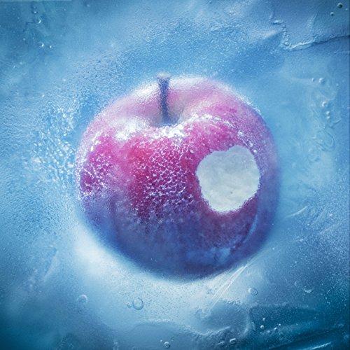 凍えそうな季節から