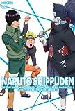 NARUTO-ナルト- 疾風伝 九尾掌握と因果なる邂逅の章 2 [DVD]