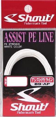 シャウト! 89-AP アシストPEライン