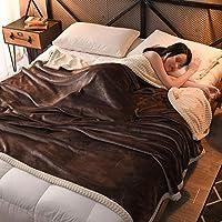 WJ 二重層 両面 毛布 厚い コーラルフリース 個人 ダブル 灰色を投げる 暖かい 固体 フランネル スーパーソフトブランケット ソファー ベッドブランケット 4色 (色 : Brown, サイズ さいず : 200 * 230センチメートル)