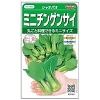 【種子】チンゲンサイ シャオパオチンゲンサイ 3ml