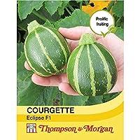 HIGH発芽SEEDSだけでなくPLANTS:トンプソン&モーガン - 野菜 - ズッキーニのEclipse F1ハイブリッド - 10シード