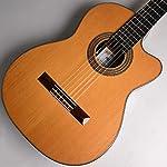 ASTURIAS S-CW/C (杉)♯41914 エレガットギター アストリアス