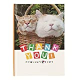 学研ステイフル ありがとうメッセージブック かご猫二匹 E10050