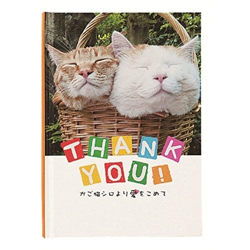 夕闇に誘いし漆黒の天使達【猫サンキュー】MVを独自考察!可愛い猫ちゃんだらけ!デスボイスで猫に感謝!の画像