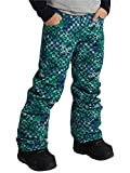 Burton(バートン) スノーボード ウェア ボーイズ パンツ KIDS' BARNSTORM PANT 2020-21年モデル