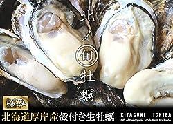【北海道厚岸産 生牡蠣 殻付き 希少な3Lサイズ 10個 (150g~200g/1個) 軍手・カキナイフ付】 満天☆青空レストランでご紹介された厚岸の極上牡蠣! 世界中の食通をうならせる海のミルク。創業70年を誇る厚岸の牡蠣漁師より直送します。時にはギフトに、時には自分へのご褒美をちょっと贅沢に。 (10個)