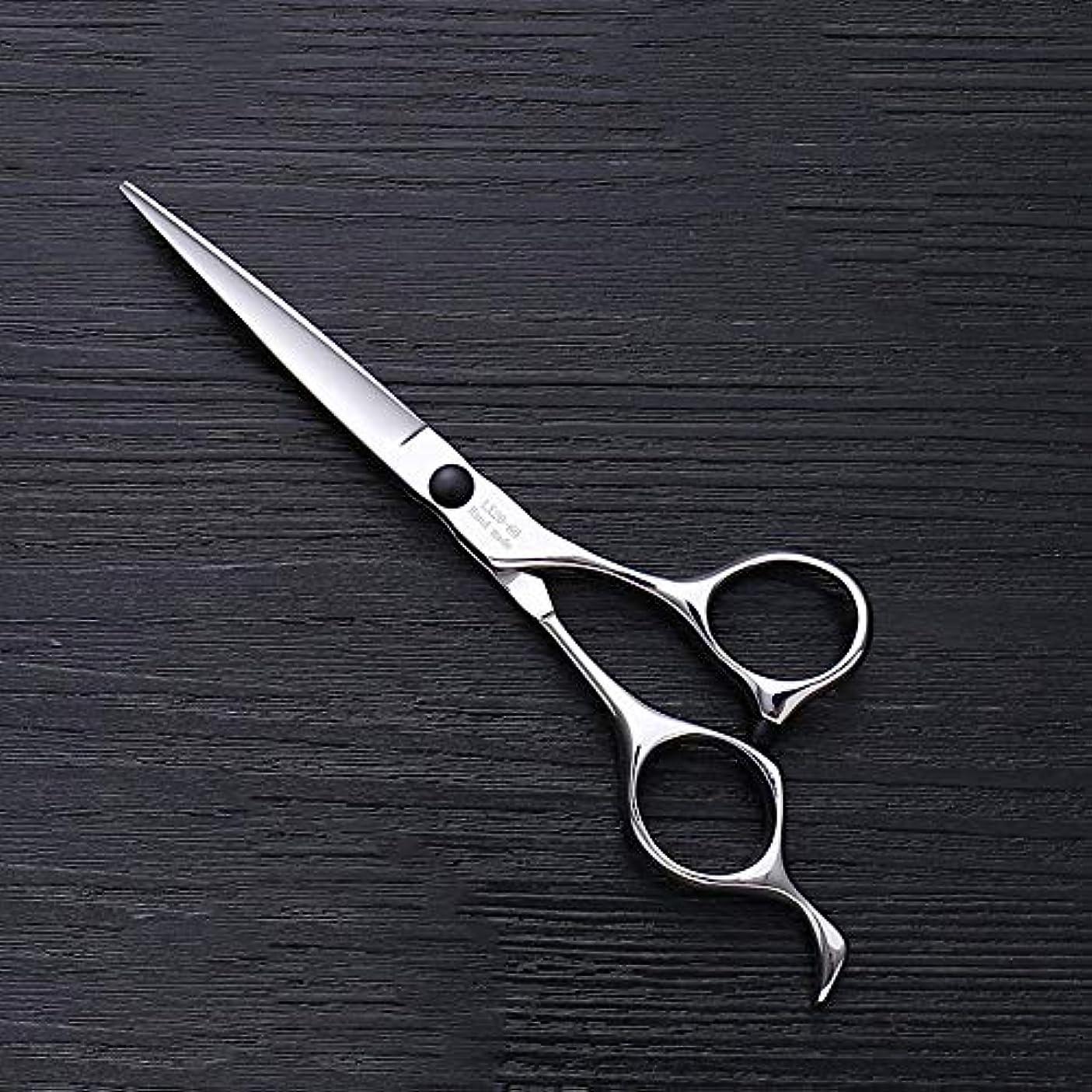 大胆不敵リテラシーパーク理髪用はさみ 6インチハイエンドステンレススチールバリカン、ヘアスタイリスト特別なヘアカットツールヘアカット鋏ステンレス理髪はさみ (色 : Silver)