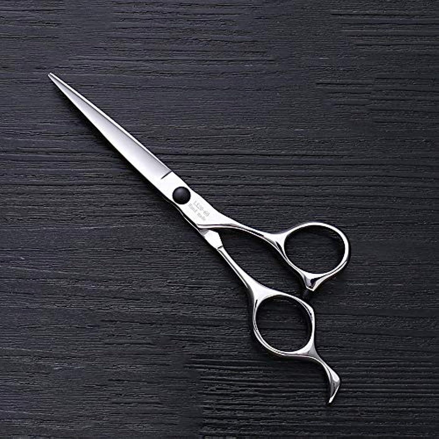 敵意会員便益理髪用はさみ 6インチハイエンドステンレススチールバリカン、ヘアスタイリスト特別なヘアカットツールヘアカット鋏ステンレス理髪はさみ (色 : Silver)