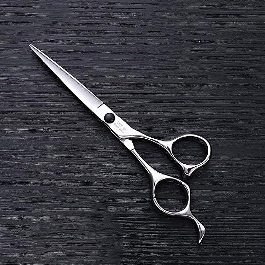 企業激怒確率6インチヘアスタイリスト特殊ヘアカットツール、ハイエンドステンレススチールバリカン ヘアケア (色 : Silver)