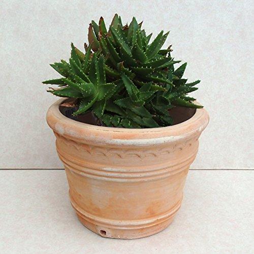 9号 三本ライン柄 アンティーク調 白化粧 植木鉢 おしゃれ 陶器 テラコッタ 穴あり(横穴あり)X6M new