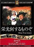 栄光何するものぞ [DVD] FRT-040