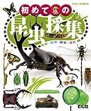 初めての昆虫採集 【むし社】(書籍/雑誌)