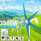 2500W 12V / 24V 6シ ト風力タ ビン+コントロ ラ 風力発電機風力発電機風力タ ビン 12v