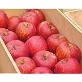 ロイヤルガストロ 【贈答用】青森県産・葉とらずりんご(約5kg/18玉前後)
