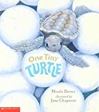 One Tiny Turtle 画像