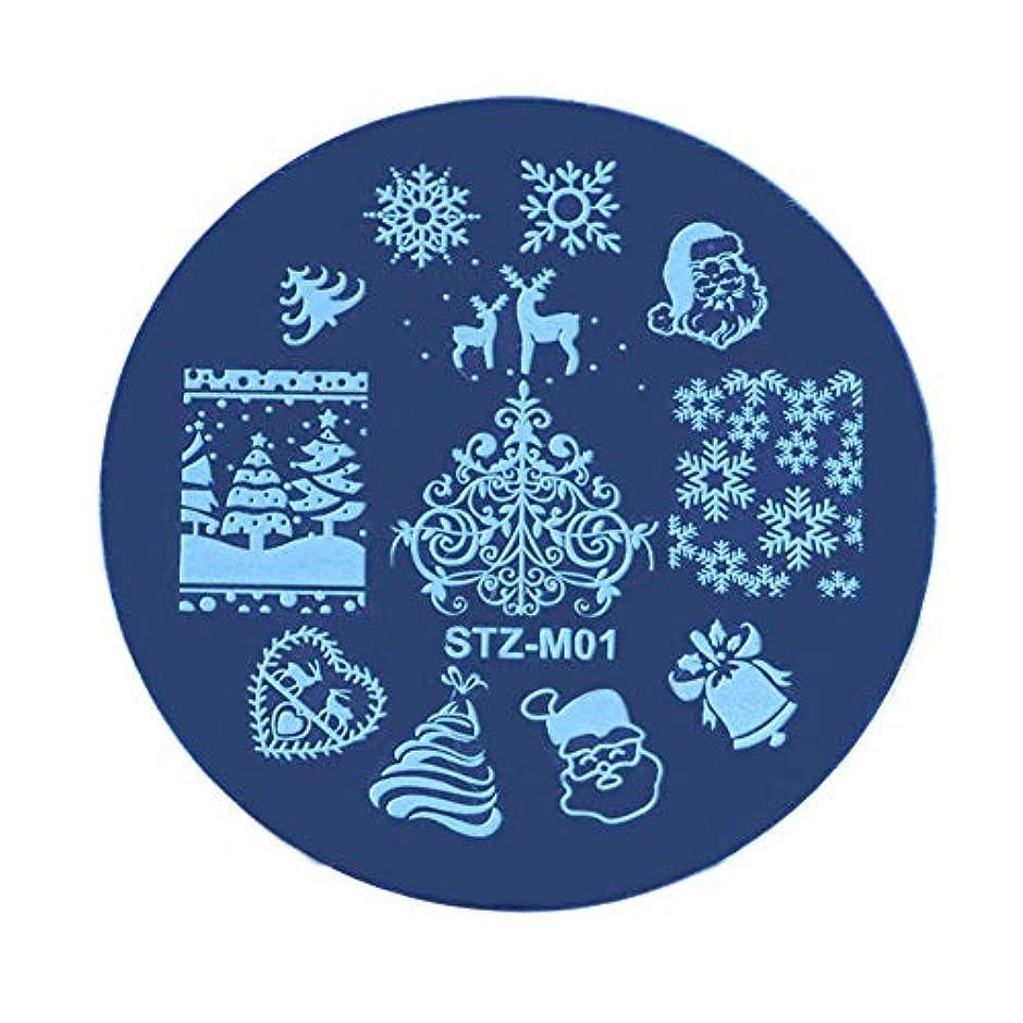 スイッチ廃止代替案Lucoss クリスマスネイルステッカー、クリスマススチールプレートステッカー、DIYネイルアートオーナメント、ネイルアートアクセサリー
