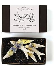 ロージーリングス ボタニスト ボタニカルワックスキュリオシティ ビオラクィーンシャーロット ROSY RINGS Botanist Collection Botanical Wax Curiosities – Viola...