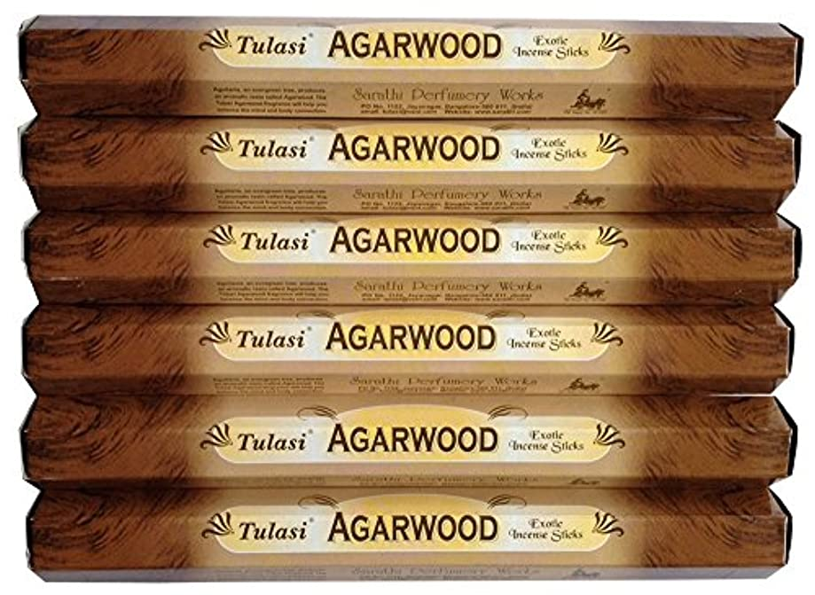 分離するテレビ局小麦粉トゥラシ アガーウッド 6個セット